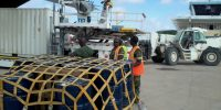 Loading of 20 feet Container plus Other Palleted Cargo